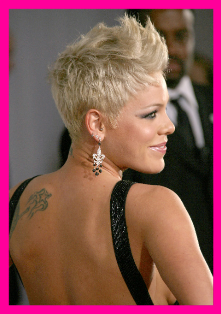 "Pop/Rock Singer PINK Rocked the 2008 VMAs with ""So What"""
